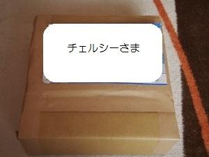 ①プレゼント1.jpg