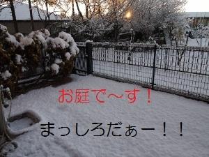 ①庭.jpg