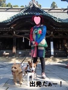①筑波山神社.jpg