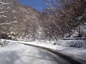 ①雪1.jpg