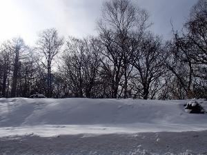 ②雪2.jpg