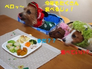 ③3わんこ2.jpg