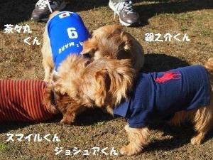 ③お友達3.jpg