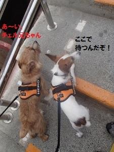 ③滝本駅3.jpg