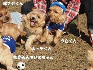 ④お友達4.jpg