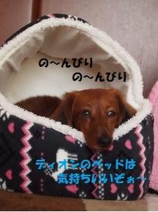 ④バティ1.jpg