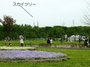 ④公園.jpg
