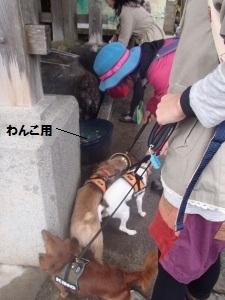 ⑩武蔵御嶽神社1.jpg