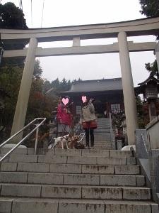 ⑪武蔵御嶽神社2.jpg