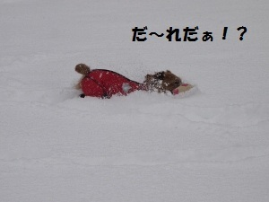 ⑬雪2.jpg