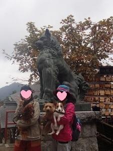 ⑮武蔵御嶽神社6.jpg