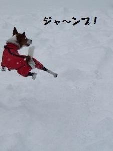 ⑮雪4.jpg