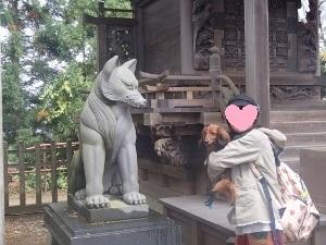 ⑰武蔵御嶽神社8.jpg