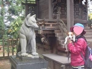 ⑱武蔵御嶽神社9.jpg