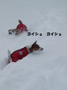 ⑳雪9.jpg