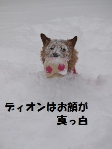 ㉑雪10.jpg