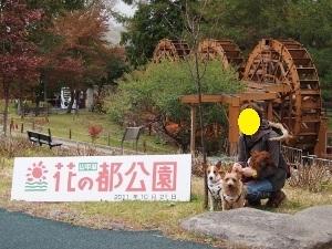 ㉓花の都公園Ⅳ.jpg