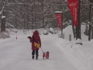 ㉘雪16.jpg