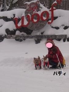 ㉙雪17.jpg